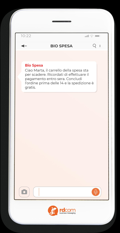 Esempio di SMS con promemoria per e-commerce
